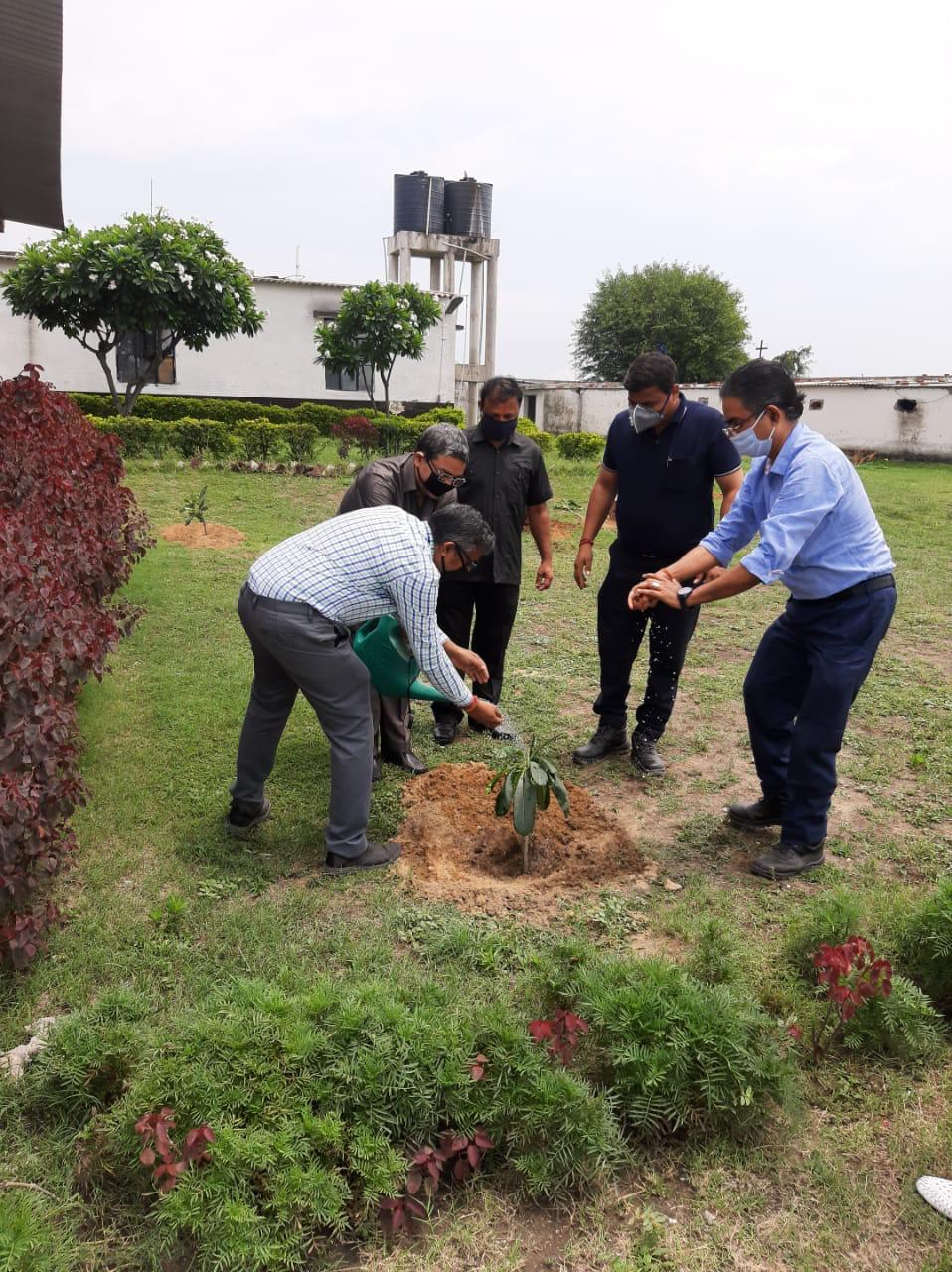 Environment Day at GP